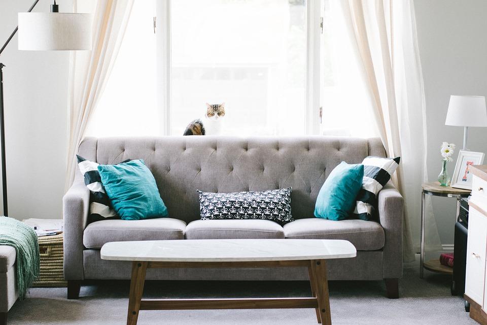 Bring liv ind i stuen med disse tips